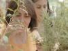 sensory garden 7